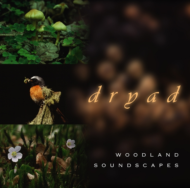 Dryad - woodland soundscapes  (1998)