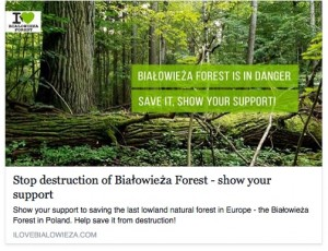 Bialowieza forest protection campaign
